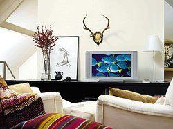 Blickfang und Mittelpunkt: <em>Der Fernseher mit seinen zahlreichen Funktionen nimmt im Hotelzimmer eine immer zentralere Rolle ein<tbs Name=