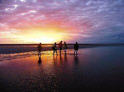 Reiseziel Wattenmeer: <em>72 Prozent der Deutschen verbringen gern ihren Urlaub in einem Nationalpark <tbs Name=
