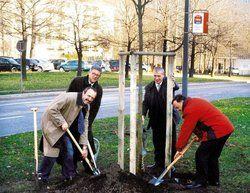 Für ein grünes Dresden: <em>(von links) Amtsleiter Detlef Thiel, die Hoteldirektoren Hans-Peter Barthen (Mercure Newa), Dominique Gernand (Ibis Hotels) und Ulfert Beckert (Mercure Albertbrücke) <tbs Name=