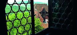 Lebendige Geschichte: Blick auf die Lutherstadt Wittenberg