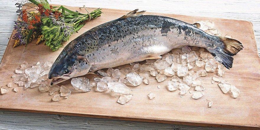 Frisch aufgetaut: Ob Island-Lachs von Transgourmet (oben) oder Feinbackwaren von Edna – TK-Produkte sind jederzeit verfügbar.