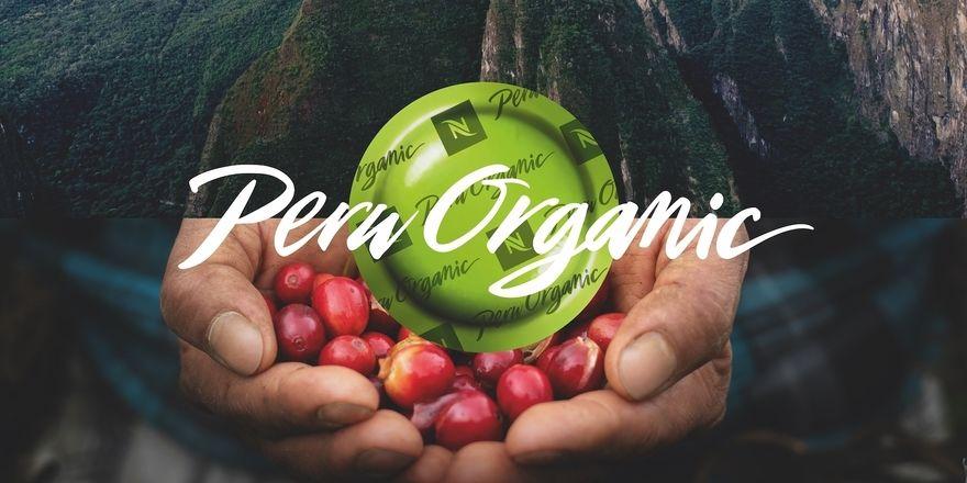 """Premium-Kaffee: Der """"Peru Organic"""" wird in den Anden angebaut"""