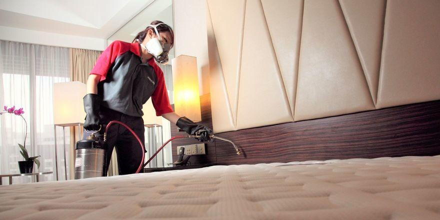 Bekämpfungsmethode von Rentokil: Bettwanzen werden erhitzt und abgetötet