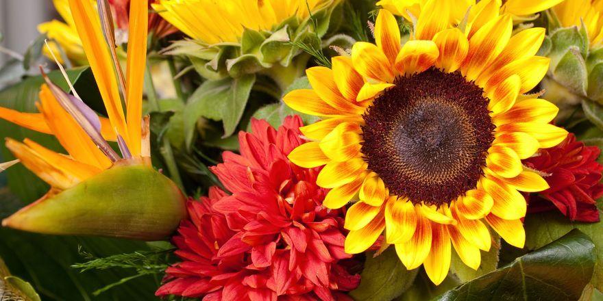 Blumen als Extra: Einen Strauß auf dem Zimmer schätzen vor allem weibliche Hotelgäste