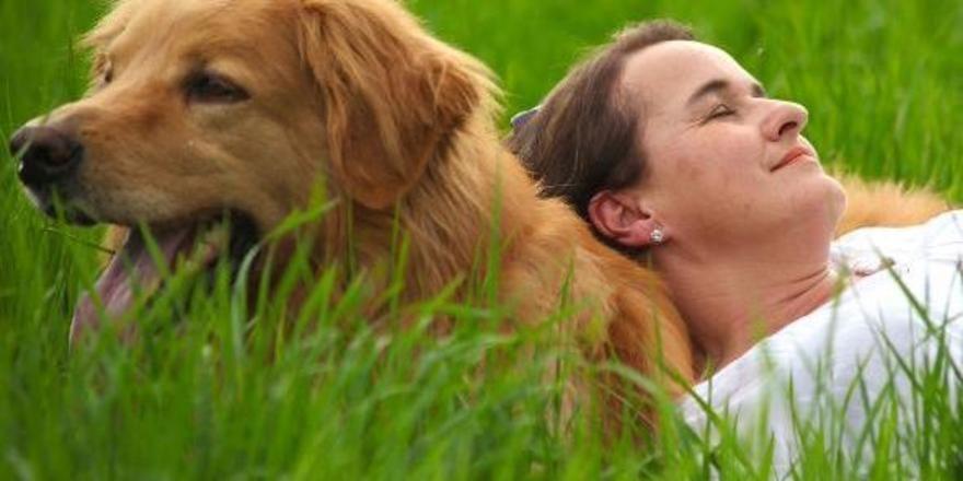 Auf dem pharis erhof startet ein hotel f r hunde for Urlaub im designhotel