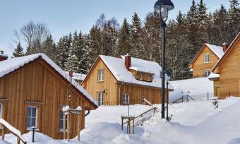 Natur pur: Die 36 Ferienhäuser liegen direkt am Wald und sind das ganze Jahr über buchbar.