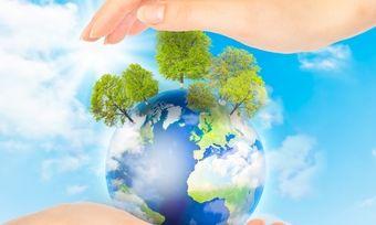 Nachhaltigkeit im Fokus: Das Portal Greentable wirbt um Restaurant, denen die Umwelt am Herzen liegt