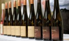 Der Schatz der Wachau: Weltklasse-Weißweine der Rebsorte Grüner Veltliner