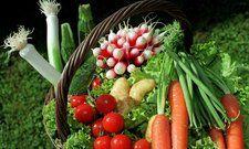 Spielt künftig die Hauptrolle auf dem Teller: Gemüse