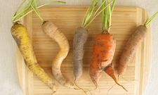 Zu gut für die Tonne: Krummes Gemüse muss nicht in den Müll