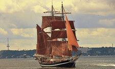 Großsegler auf der Kieler Förde: Die Kieler Woche ist die größte Segelsportveranstaltung der Welt.