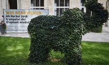Es dauert mehr lange: Ab Oktober will der Elephant zurück sein