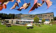 Hat die vier-Tage-Woche eingeführt: Das Hotel Aviva make friends in Österreich.