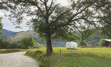 Idyllisch: Eine Wiese wie in Fröhnd bei Lörrach ist einer der kleinen, feinen Standorte, die die Firma Sleeperoo sucht.