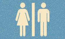 """Zwei Geschlechter sind nicht genug: Ab sofort gibt es offiziell die Bezeichnung """"divers"""" für Intersexuelle. Das Anbieten einer dritten Toilette könnte ein Thema werden."""