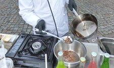 Proteinreicher Snack: Espitas-Köche bereiten Insekten als Streetfood zu