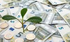 Schutz für Kleinere: Baden-Württemberg schießt bei kleinen Betrieben und Solo-Selbstständigen Kapital zu